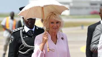 Camilla: quand son hygiène douteuse dégoûtait Lady Diana