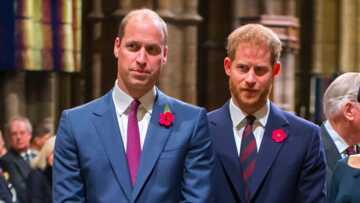 William accusé par Harry d'avoir mal accueilli Meghan Markle dans la famille royale… la raison de leur brouille (enfin) dévoilée?