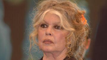"Brigitte Bardot, anti-féministe, regrette l'époque où on saluait son ""joli cul"""