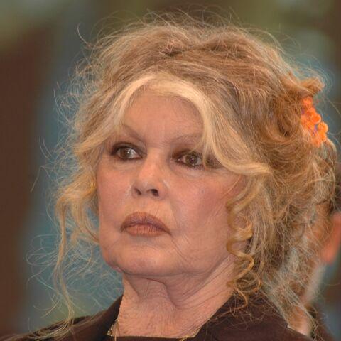 Brigitte Bardot, déchaînée contre Emmanuel et Brigitte Macron