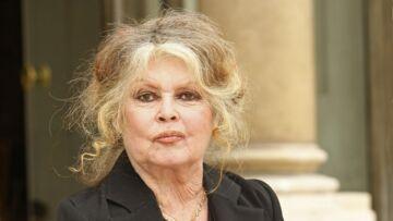 Brigitte Bardot, un nouveau commentaire ambigu sur Brigitte Macron