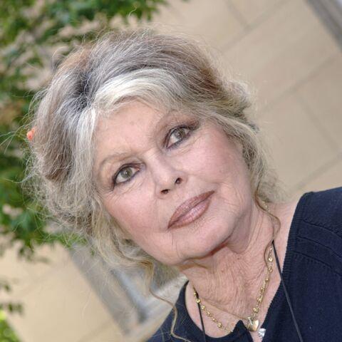 Brigitte Bardot, féroce: cette carrière qu'elle aurait préféré pour Emmanuel Macron