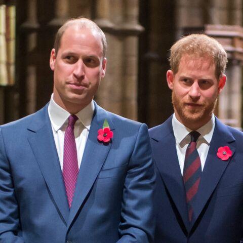 Ce cadeau insolite pour William et Harry qui a dû bien amuser Camilla
