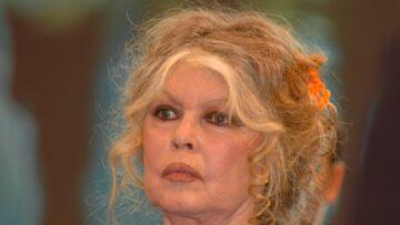 Brigitte Bardot spécialisée dans l'attaque des ministres, François de Rugy lui demande de se calmer