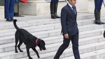 La boutique de l'Elysée propose un nouvel objet insolite… qui va plaire aux petits-enfants de Brigitte Macron