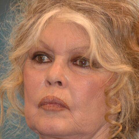 VIDEO – Brigitte Bardot, affaiblie mais combative, rend une visite surprise aux Gilets jaunes