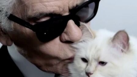LagerfeldÀ Karl Quoi Mort La De ChoupetteSon Vie Ressemblait wNnvm80