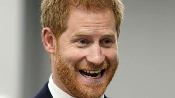 Ce compagnon un peu spécial qui a accompagné le prince Harry lors d'une visite