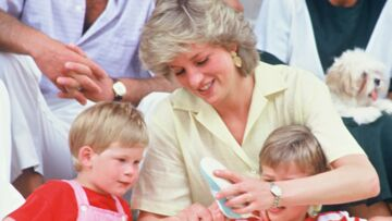 Harry et William, désormais distants l'un de l'autre: la pire crainte de leur mère Lady Diana