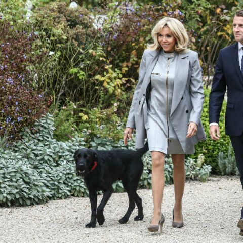 Nemo, le chien de Brigitte et Emmanuel Macron, sème la terreur dans les jardins de l'Elysée