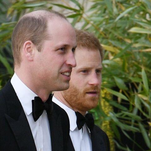 Harry et William, cette apparition des deux frères qui tombe à pic