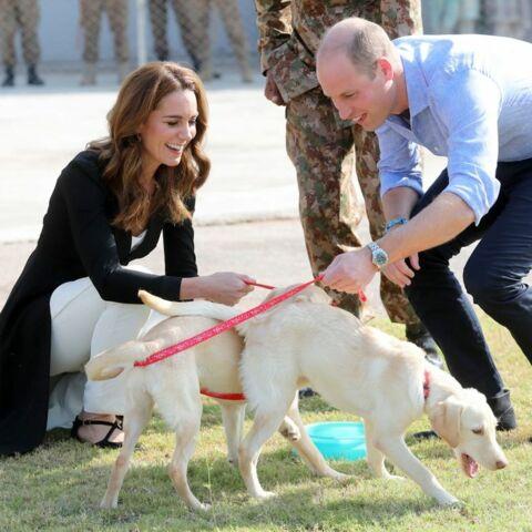 PHOTOS – Kate Middleton et William en manque de leurs enfants au Pakistan… mais ils ont trouvé de quoi l'assouvir