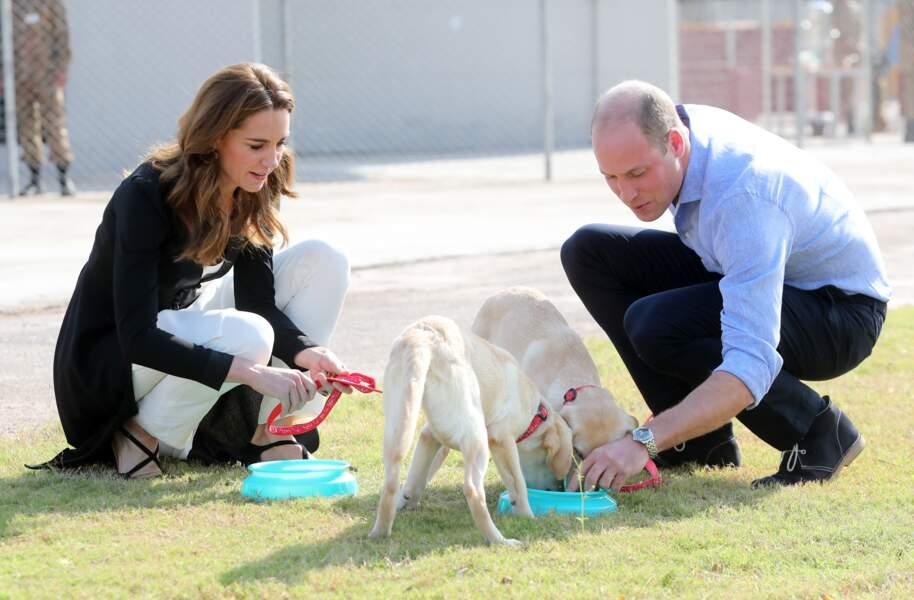 Séance câlins canins pour Kate et William