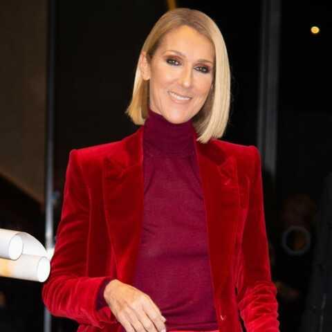 Céline Dion bretonne: ces révélations qui amusent