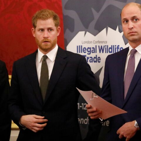 Harry et William en guerre: le frère de Diana totalement désemparé
