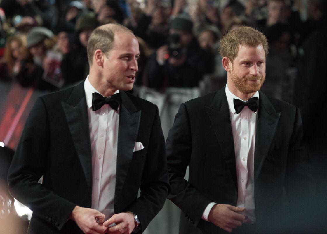 William et Harry unis en 2017