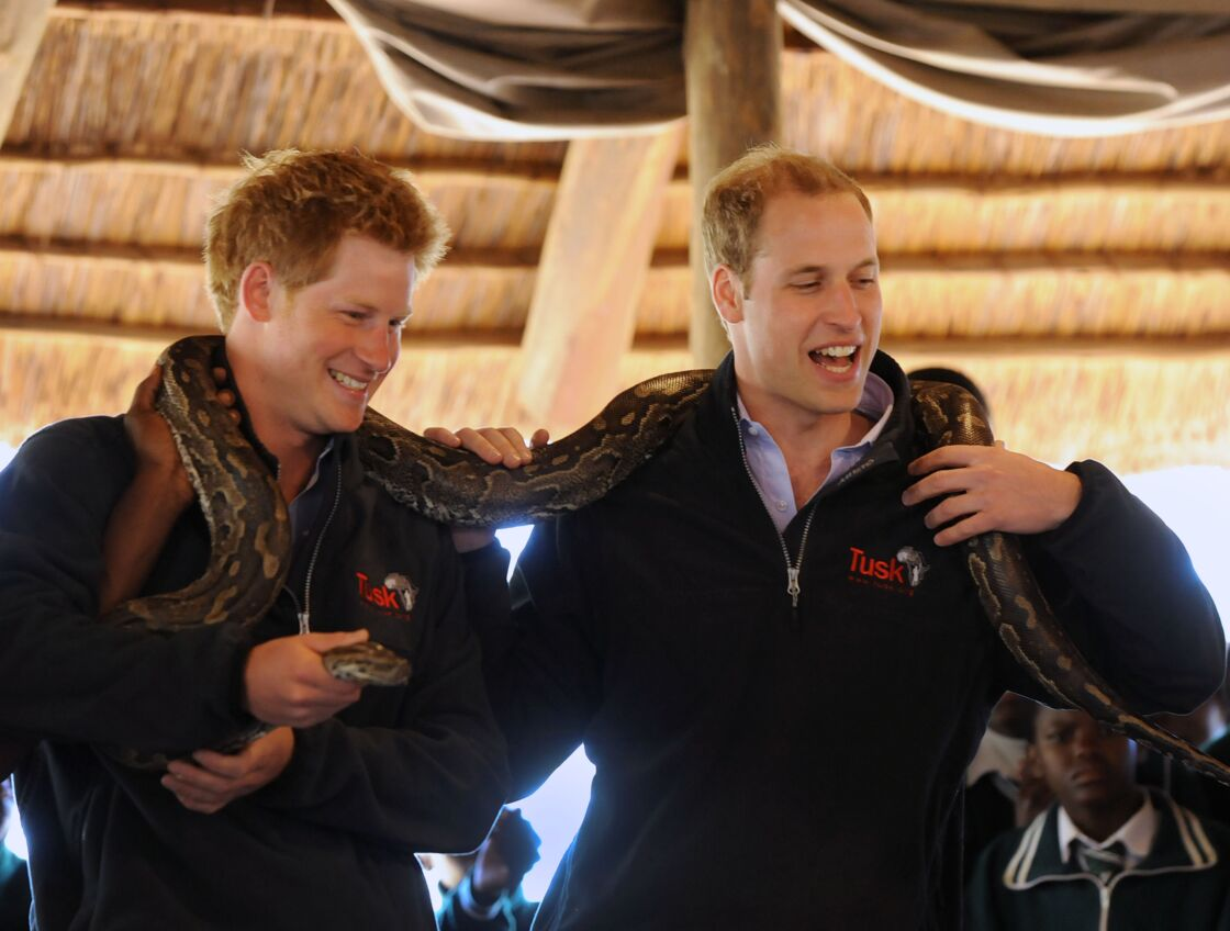 Harry et William au Bostwana, en juin 2010.