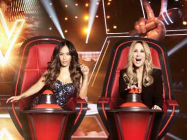 PHOTOS : The Voice, l'évolution physique de Lara Fabian