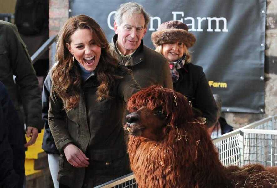 Kate Middleton aussi subjuguée qu'amisée par un alpaga, à la ferme the Ark Open, en Irlande du Nord, le 12 février 2020.