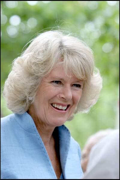 Avant d'épouser Andrew Parker-Bowles, Camilla a travaillé comme secrétaire dans diverses entreprises du West End de Londres. Elle a également oeuvré comme réceptionniste dans l'entreprise de décoration Sibyl Colefax & John Fowler à Mayfair.