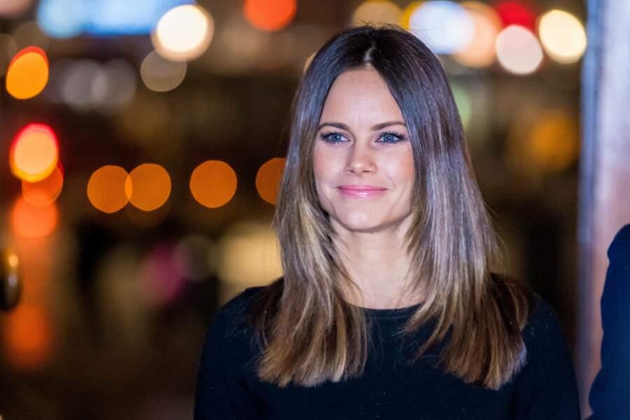 Avant de rencontrer le prince Carl Philip de Suède en 2010, elle a même participé à une émission de télé-réalité, Paradise Hotel, tout en se rodant à la comptabilité et en enseignant le yoga.