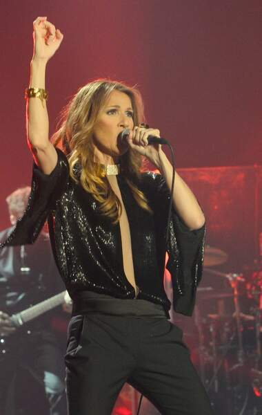 Céline Dion : en concert à Paris en décembre 2013