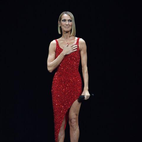 Céline Dion pourra-t-elle chanter aux Vieilles Charrues? Le patron du festival lance un «cri du coeur»