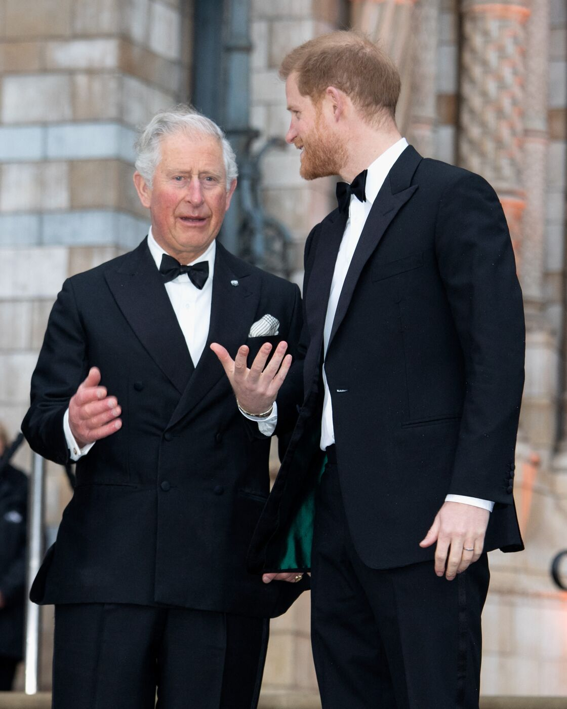 Les princes Charles et Harry à l'avant-première de la série Netflix