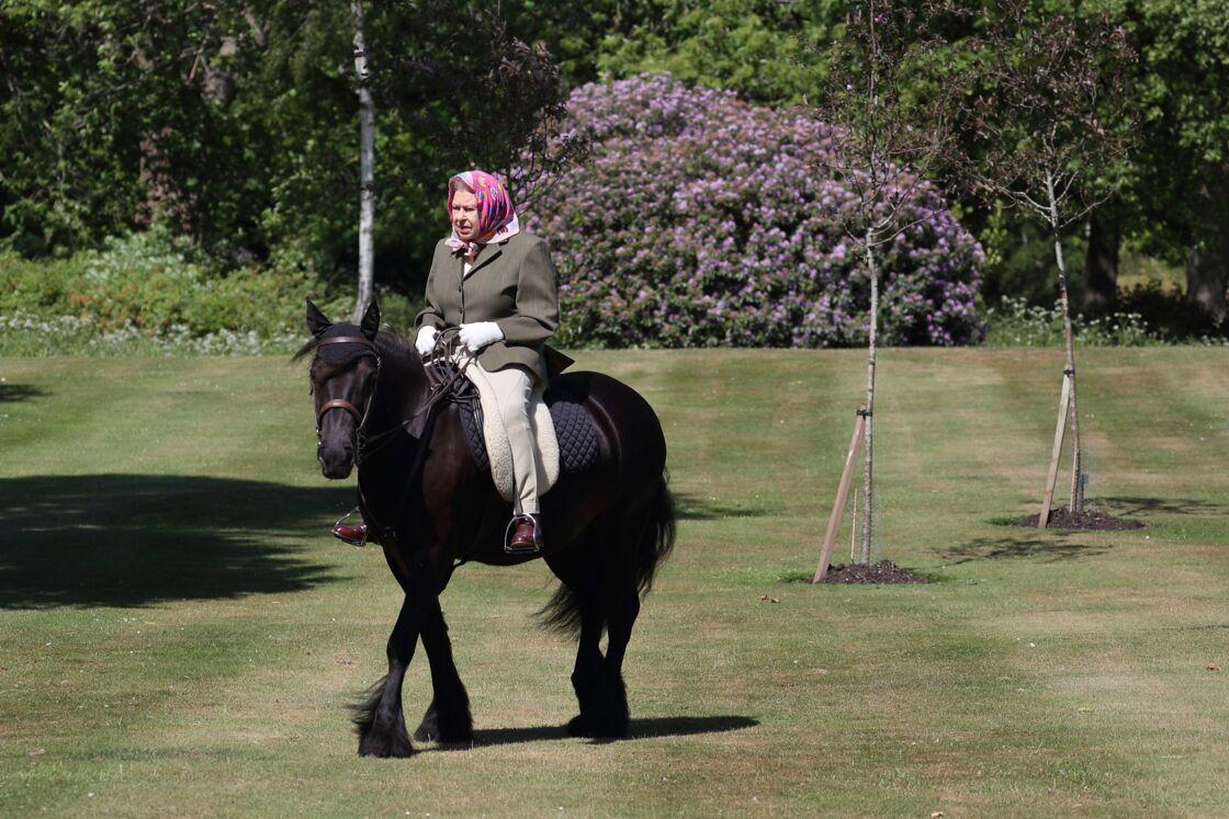 Elizabeth II montant Balmoral Fern, un Fell Pony de 14 ans, au château de Windsor le 31 mai 2020.