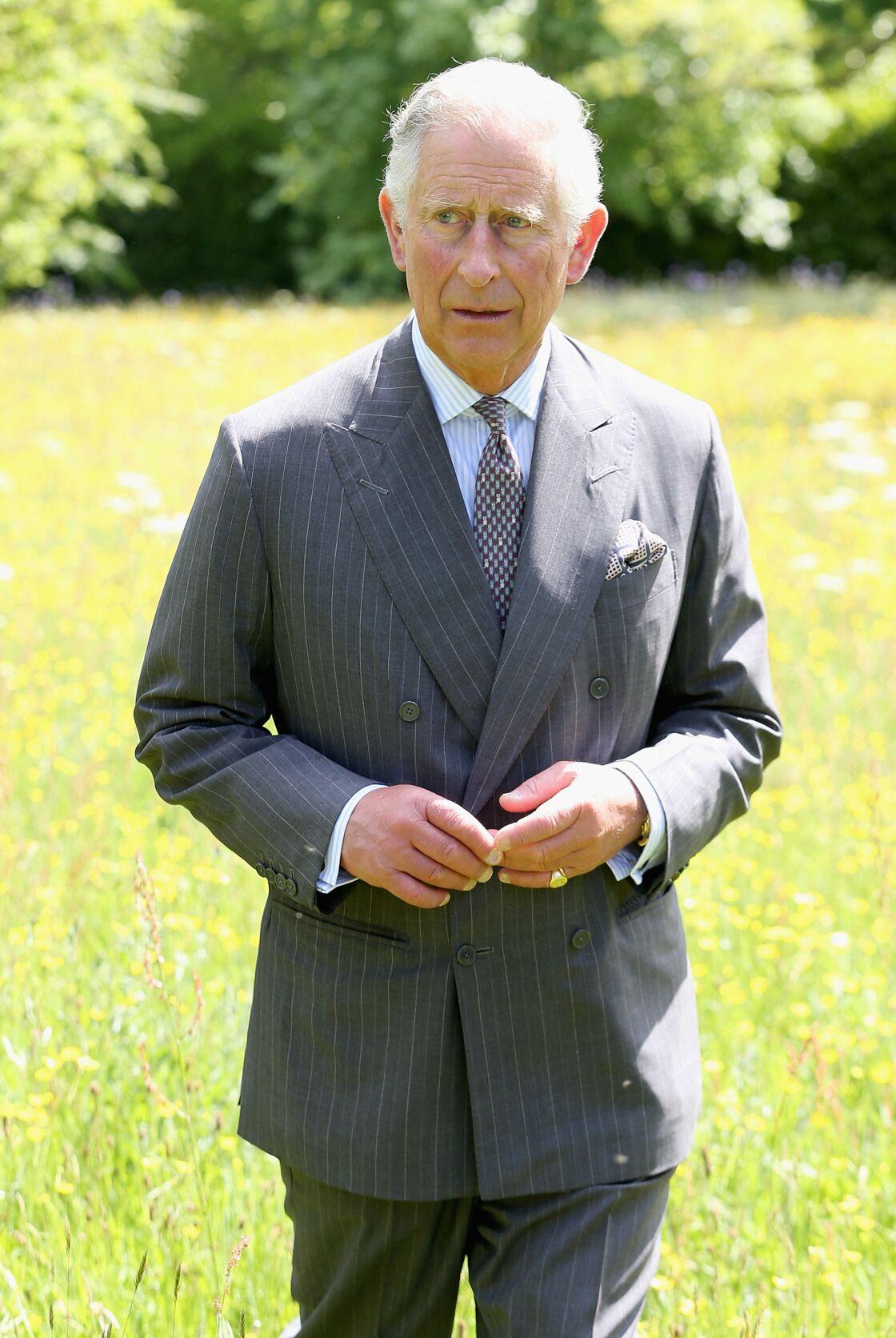Le prince Charles prend la pose dans les jardins de sa résidence de campagne d'Highgrove.