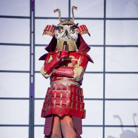 Mask Singer: qui est le hibou?