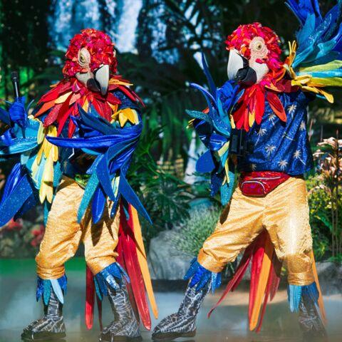 Mask Singer: découvrez qui sont les perroquets!