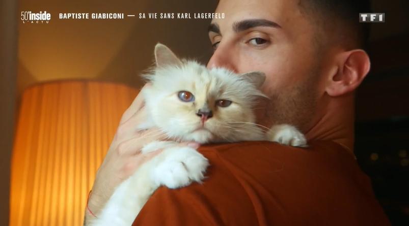 Choupette, la chatte de Karl Lagerfeld et Baptiste Giabiconi dans 50' inside sur TF1 le 24 octobre 2020