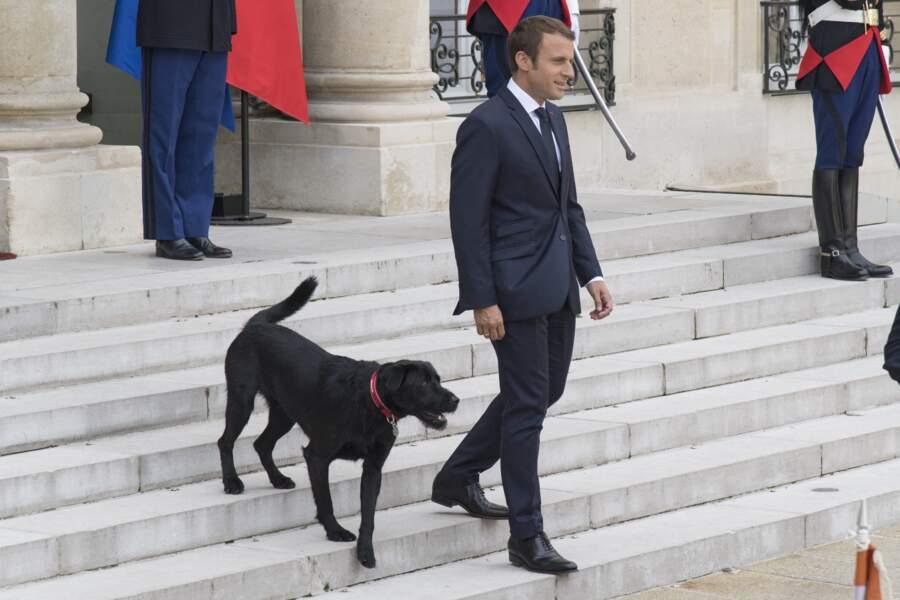 Le président Emmanuel Macron et son chien Nemo, adopté en août 2017 dans un refuge de la SPA.