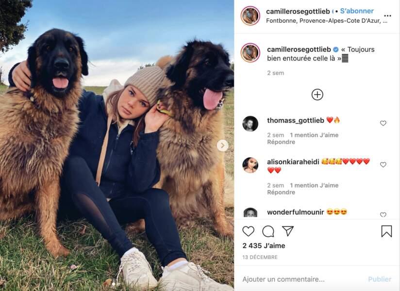 Camille Gottlieb (et ses chiens)