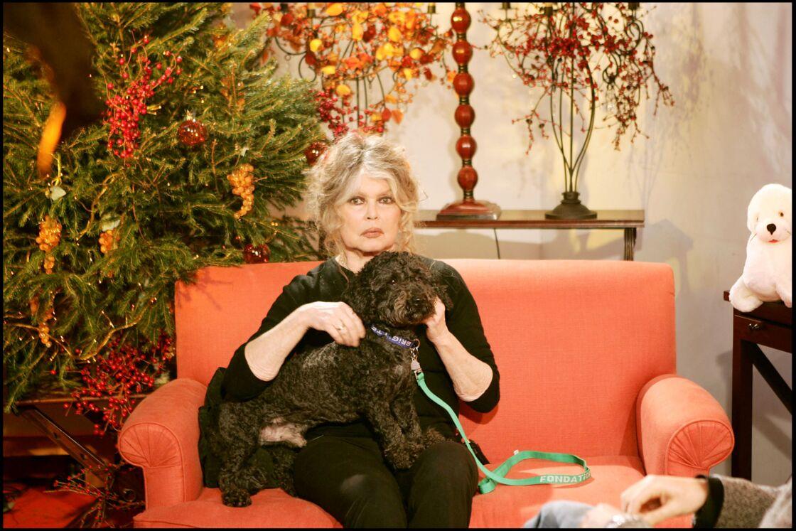 Brigitte Bardot se dit inquiète pour l'avenir des animaux qui sont, selon elle,
