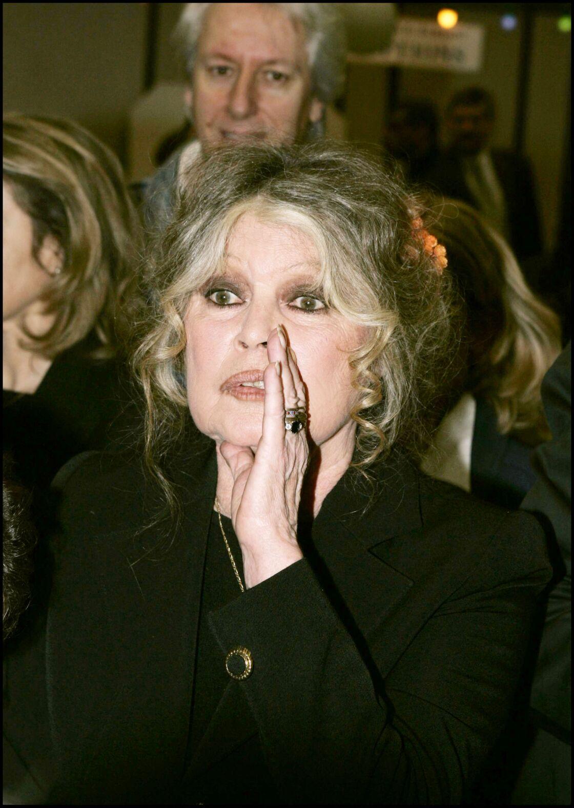 Du haut de ses 86 ans, Brigitte Bardot n'a pas peur de dire ce qu'elle pense, quitte à déplaire.