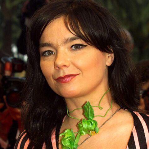 Björk agresse un photographe en Nouvelle-Zélande