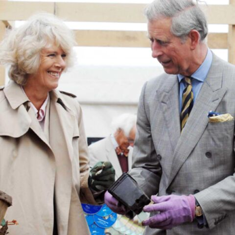 So nature le prince Charles!