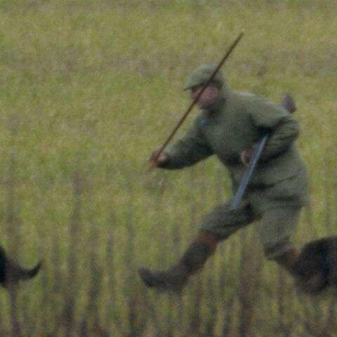 Le prince Edward dans la rubrique des chiens écrasés
