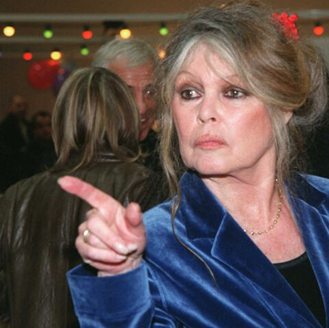 Brigitte Bardot correspond avec la chatte de Karl Lagerfeld