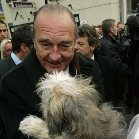 Vidéo: Jacques Chirac, un homme et son (nouveau) chien