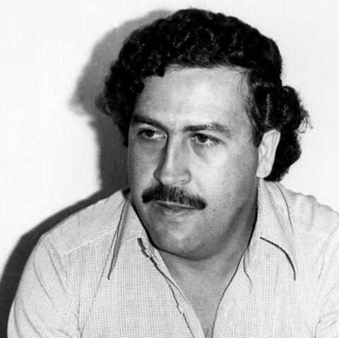 Pablo Escobar: son hippopotame est mort sous les tirs de l'armée