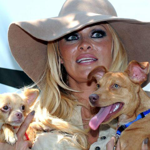 Pamela Anderson a adopté