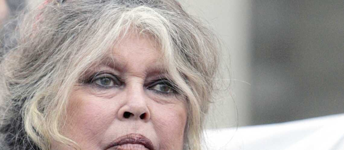 Brigitte Bardot s'en prend à Eva Joly