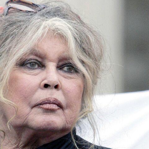 Brigitte Bardot, le tweet de la colère