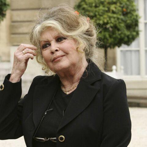 Brigitte Bardot, Présidente?