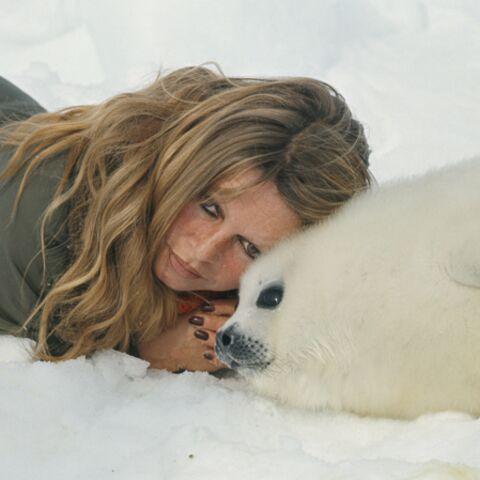 Brigitte Bardot dit «oui aux phoques, non aux érables»
