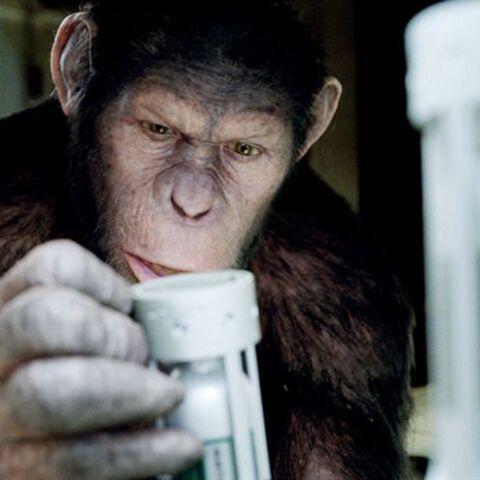 Andy Serkis, le vrai héros de La Planète des Singes: Les Origines