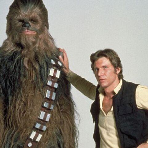 Quand Harrison Ford retrouve Chewbacca